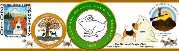 National Beagle Club Specialty